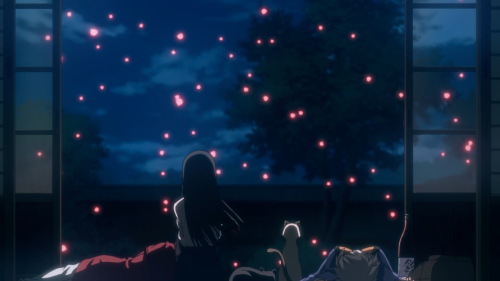 Flying Witch / Episode 12 / Makoto watching some glowing fish